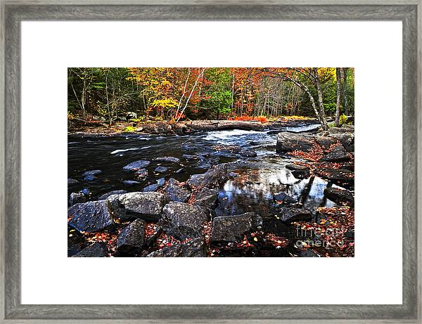 Fall Forest And River Landscape Framed Print