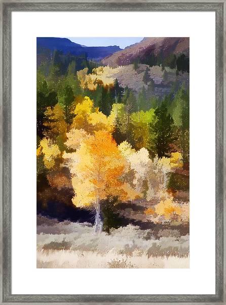 Fall In The Sierra Iv Framed Print