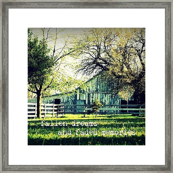 Fallen Dreams And Faded Memories...✨ Framed Print