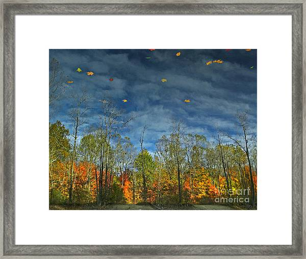 Falling Into Winter Framed Print