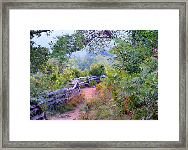 Fence To The Blueberries Filtered Framed Print