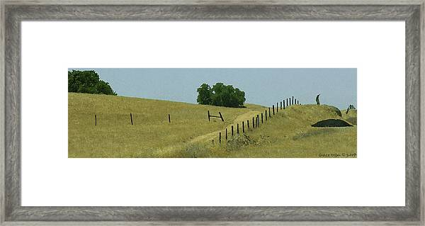 Field Fence Framed Print