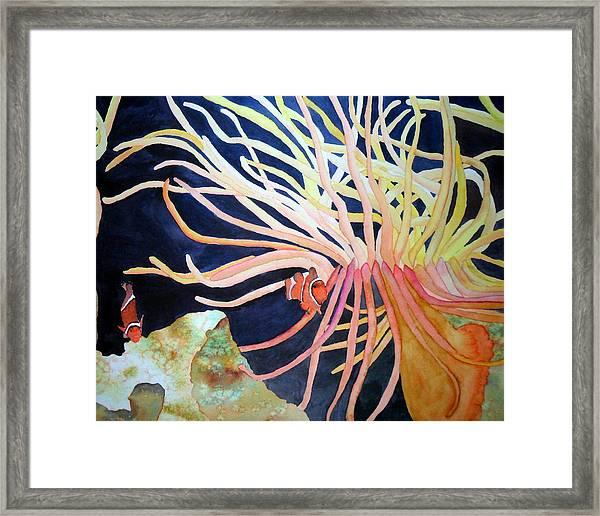 Finding Nemo Framed Print