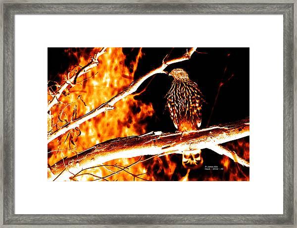 Fire Hawk 0112 Framed Print