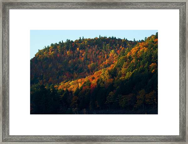 First Morning Light Framed Print
