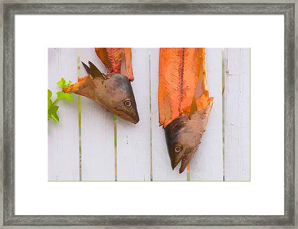 Fish Heads Framed Print