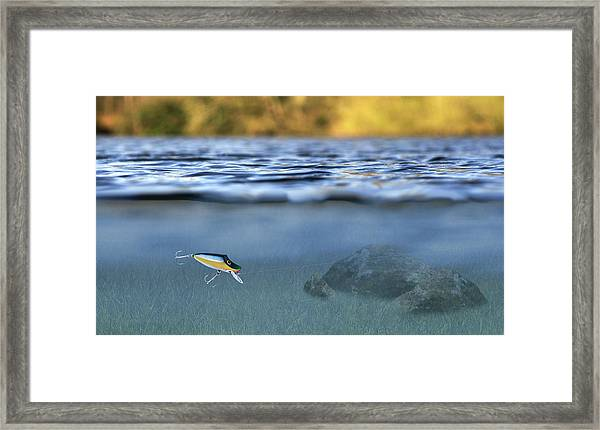 Fishing Lure In Use Framed Print
