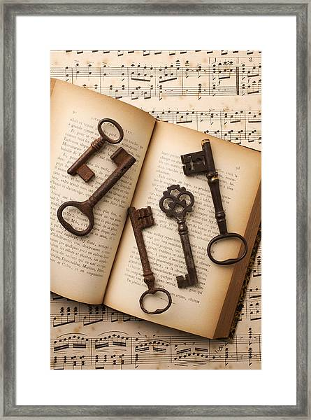 Five Old Keys Framed Print