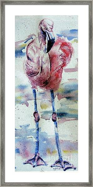 Flamingo Mist Framed Print