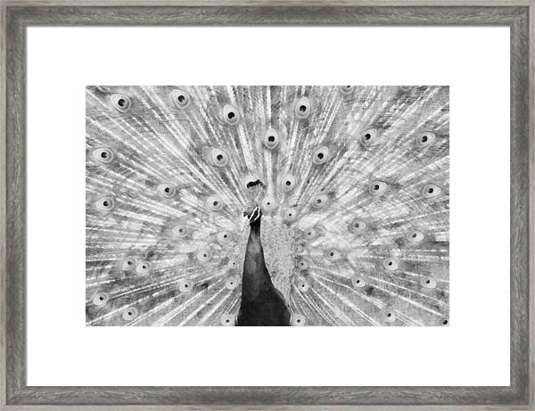 Flaunting Bw Framed Print