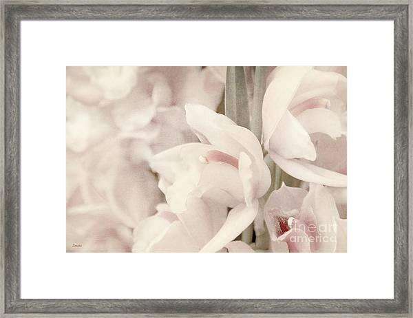 Flower Dream Framed Print