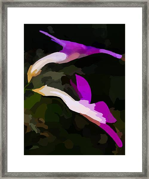 Flowers Dancing Framed Print