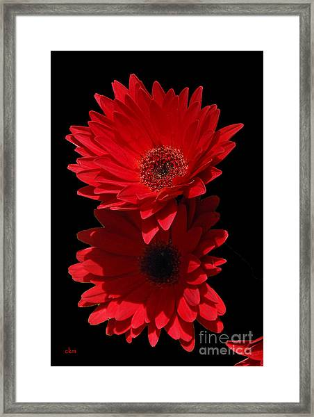 Flowers From My Son Framed Print