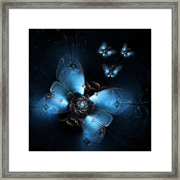 Flying At Night Framed Print