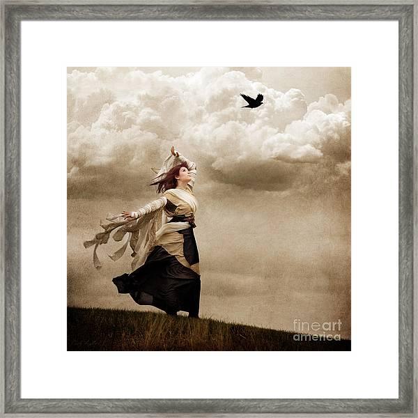 Flying Dreams Framed Print