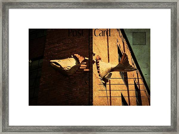 Flying Fish Postcard Framed Print by Cathie Tyler