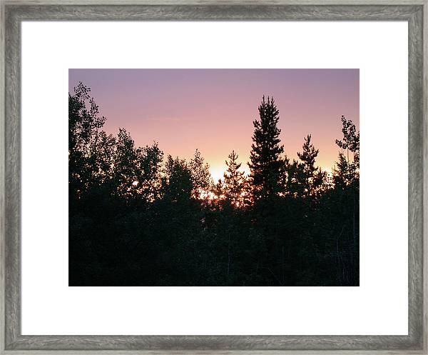 Forest Sunset Silhouette Framed Print
