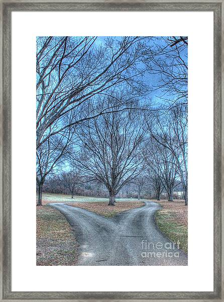 Fork In The Road Framed Print