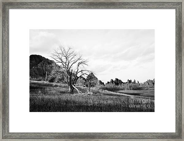 Fountain Valley In Black And White Framed Print