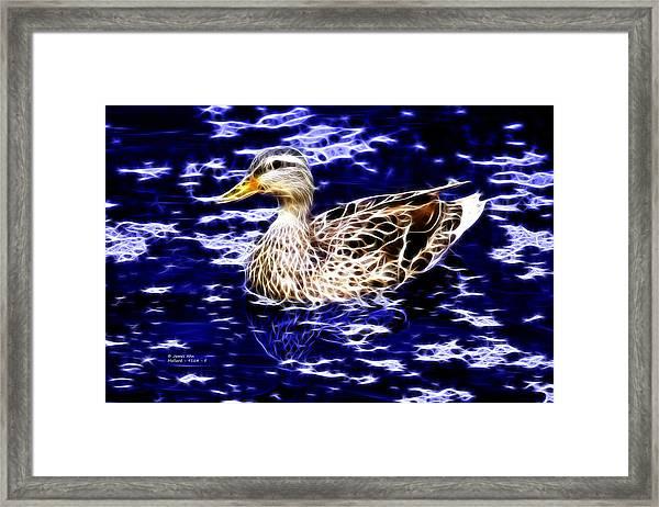 Fractal - Mallard In Pond- 9164 Framed Print