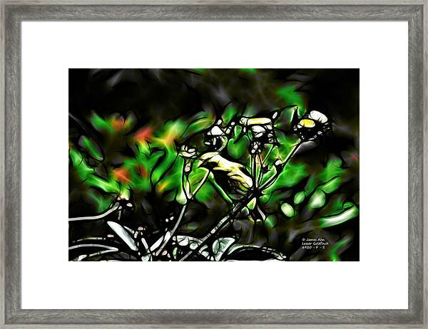 Fractal S - Take A Look - Lesser Goldfinch Framed Print