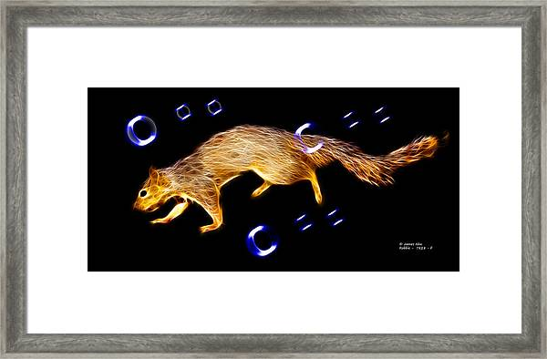 Fractal - Searching -  Robbie The Squirrel -7828 Framed Print