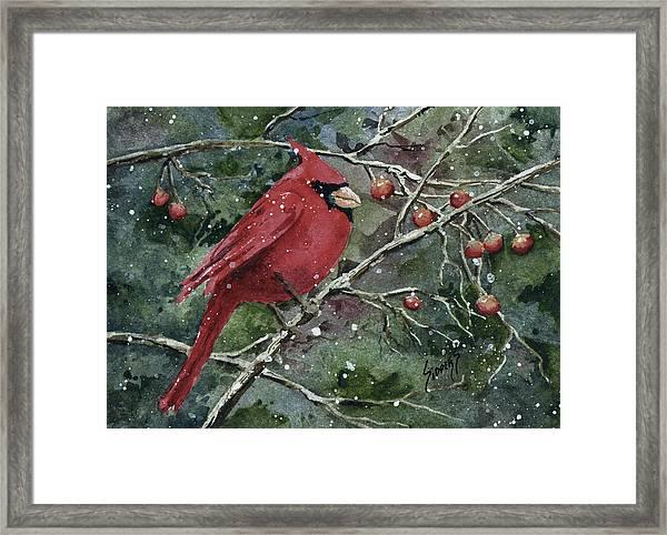 Franci's Cardinal Framed Print