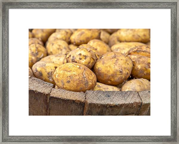 Freshly Harvested Potatoes In A Wooden Bucket Framed Print