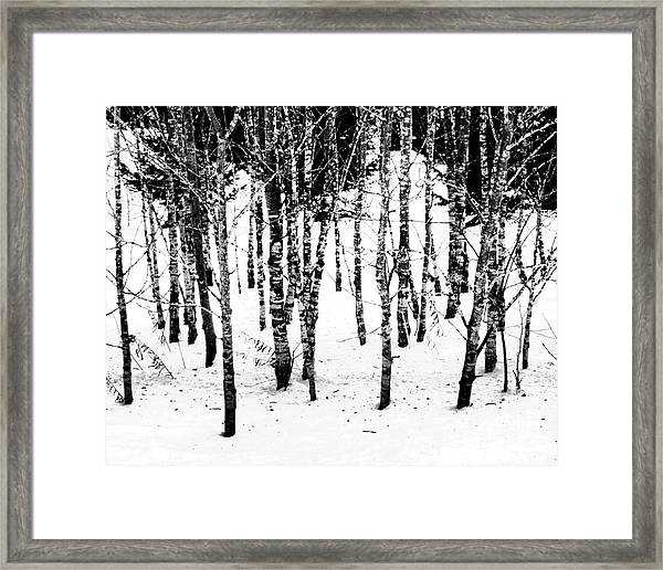 Frigid White Framed Print