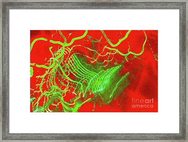 From Chaos To Victory Framed Print