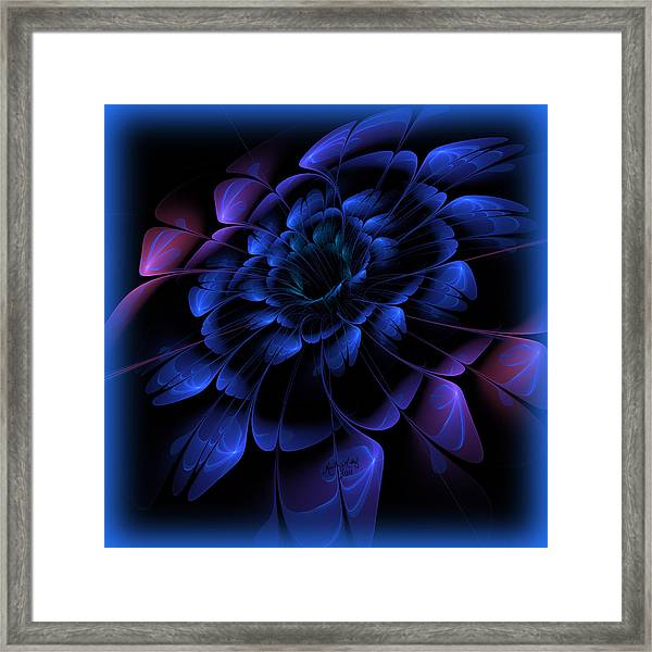Frosty Flora Framed Print