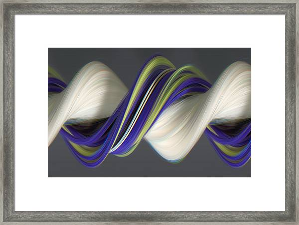 Fuzzy Duster And Spider Framed Print