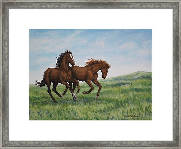 Galloping Horses Framed Print