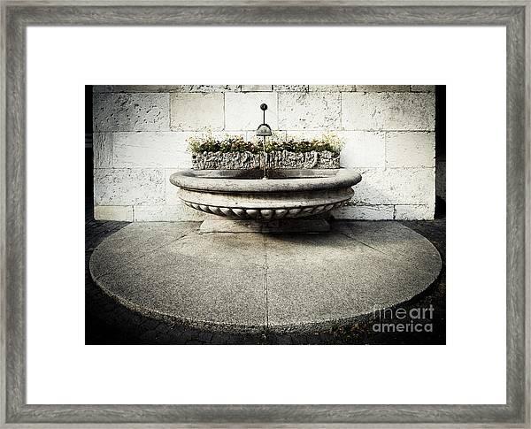 Geneva Fountain 1 Framed Print