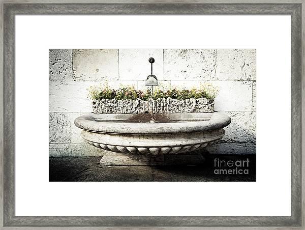 Geneva Fountain 2 Framed Print