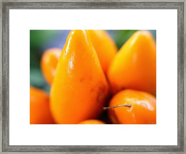 Ghost In The Pepper Framed Print