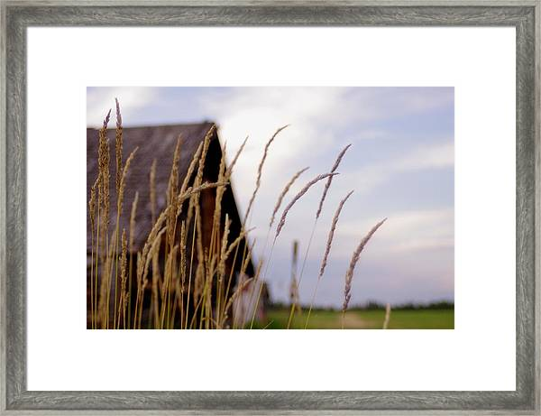 Glancing Back At A Memory Framed Print by Kelly Reich