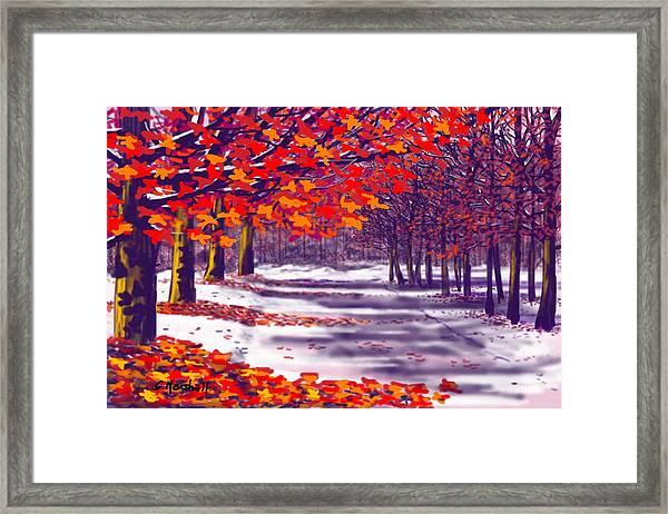 Glory Of Autumn Framed Print
