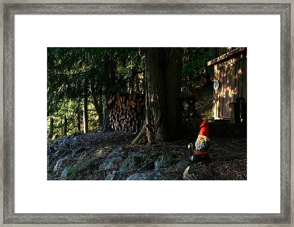 Gnome And The Woodpile Framed Print