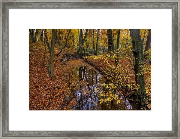 Going Through Yellow Framed Print