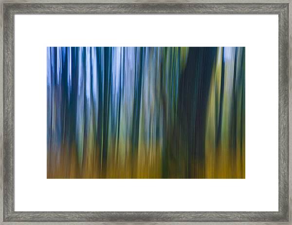Golden Blue Framed Print