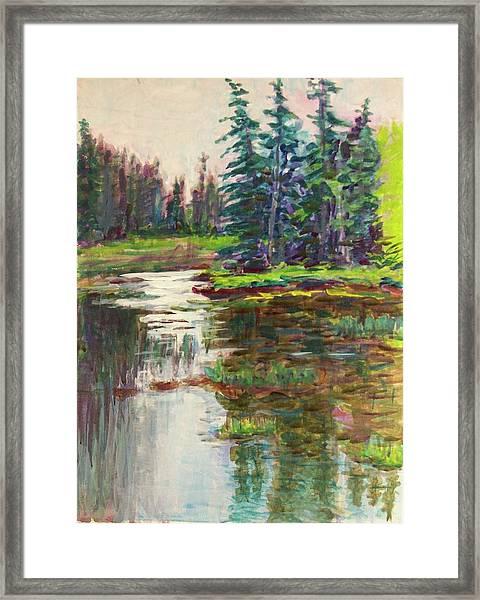 Goose Cove In Acadia Framed Print