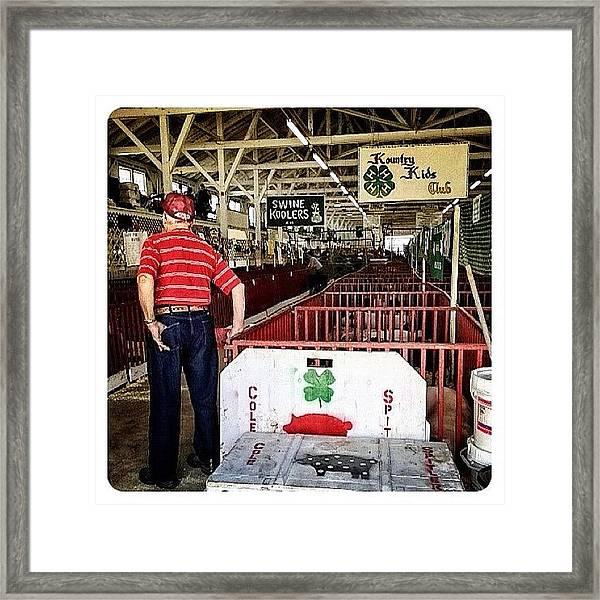 Gramps In The Swine Barn Framed Print