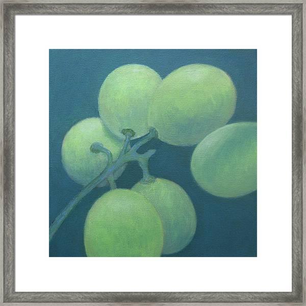 Grapes No. 15 Framed Print