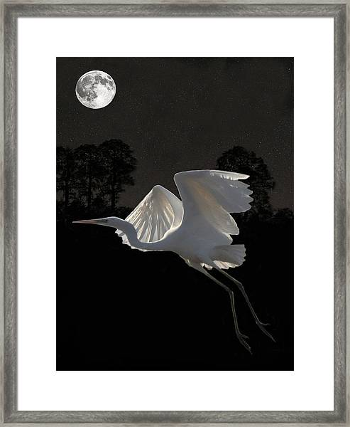 Framed Print featuring the mixed media Great Egret In Flight by Eric Kempson