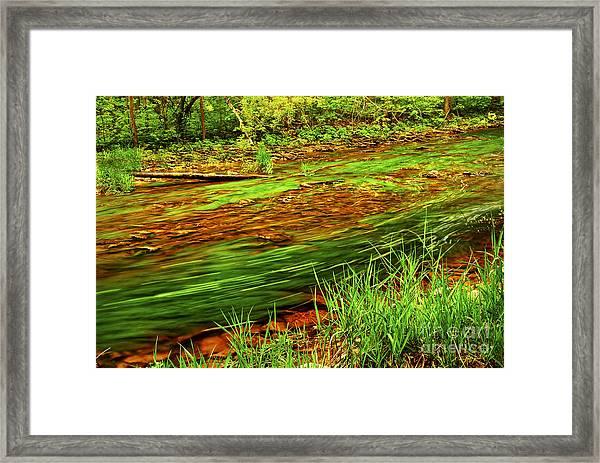 Green Forest River Framed Print