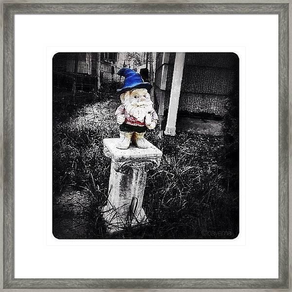 Greenville's Garden Gnome Framed Print