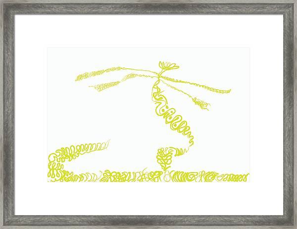 Ground Frond Framed Print