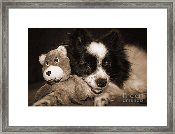 Gypsy With Billy Beaver Framed Print