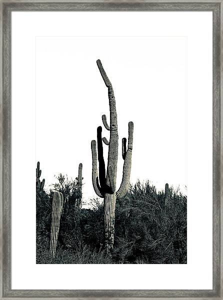 Hands Up Framed Print